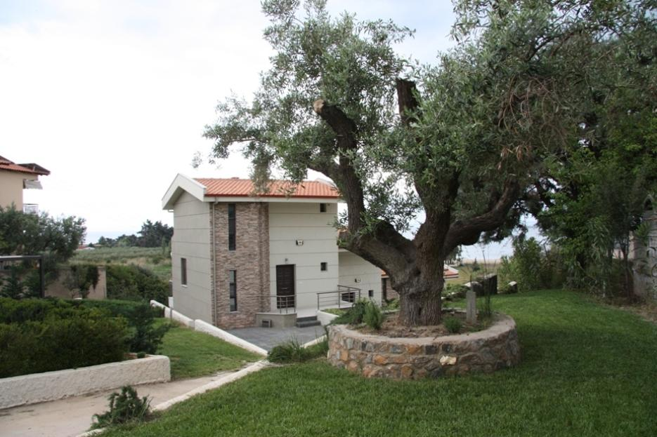 Ahinos, Halkidiki-Sithonia, Greece - complex of townhouses with land plots just few steps away from the beautiful beach