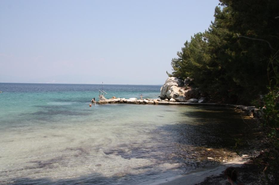 Sofia, Northern Aegean Islands, Greece - land plot - second line to the sea for sale in Thassos