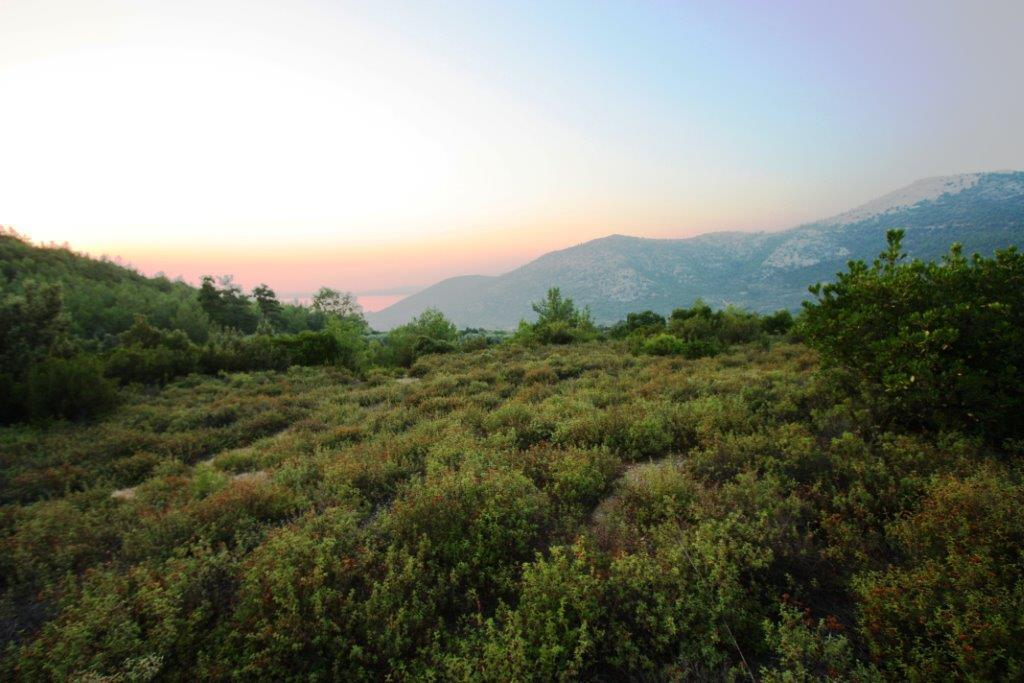 Argiro 2, Northern Aegean Islands, Greece - Beautiful plot of land with a panoramic view for sale in Greece