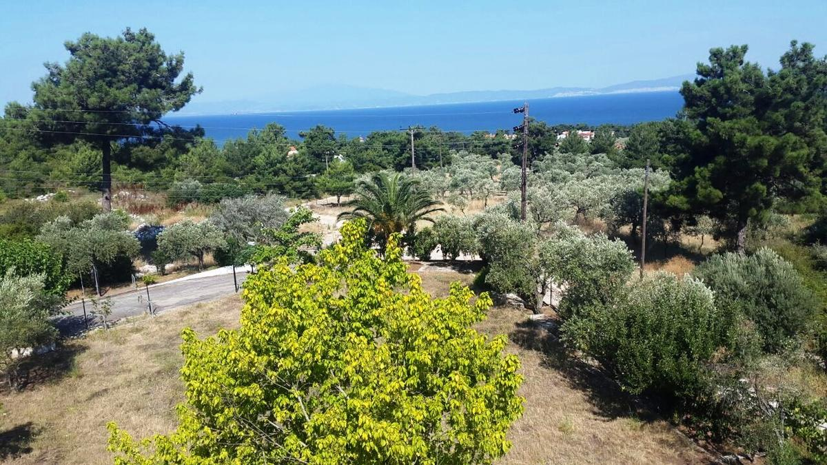 Kirki, Northern Aegean Islands, Greece - unfinished hotel or apartment complex for rent with stunning views on a large plot 9000m2
