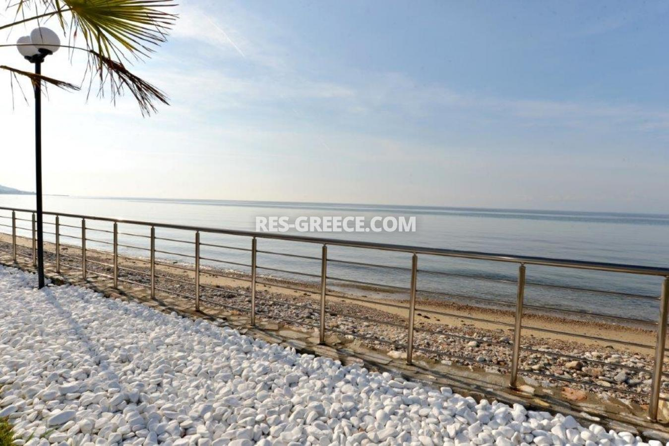 Arhondula Villa 3, Northern Aegean Islands, Greece - ready beachfront complex for rent on Thassos island with EOT licences - Photo 28