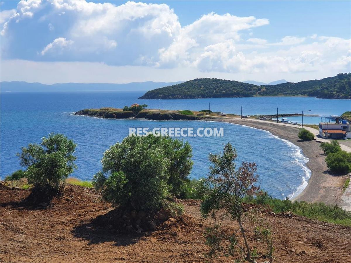 Analampi 1, Halkidiki-Kassandra, Greece -  - Photo 9
