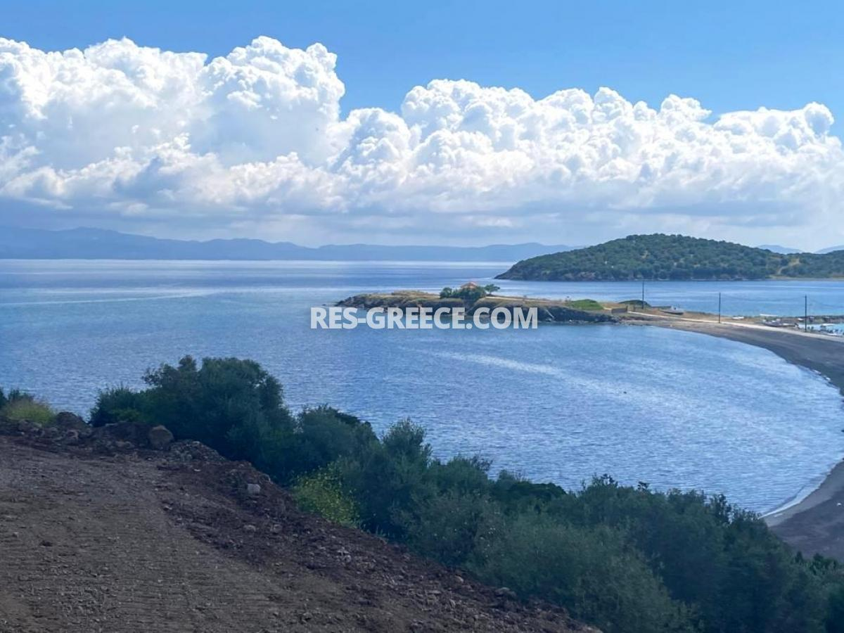 Analampi 1, Halkidiki-Kassandra, Greece -  - Photo 20