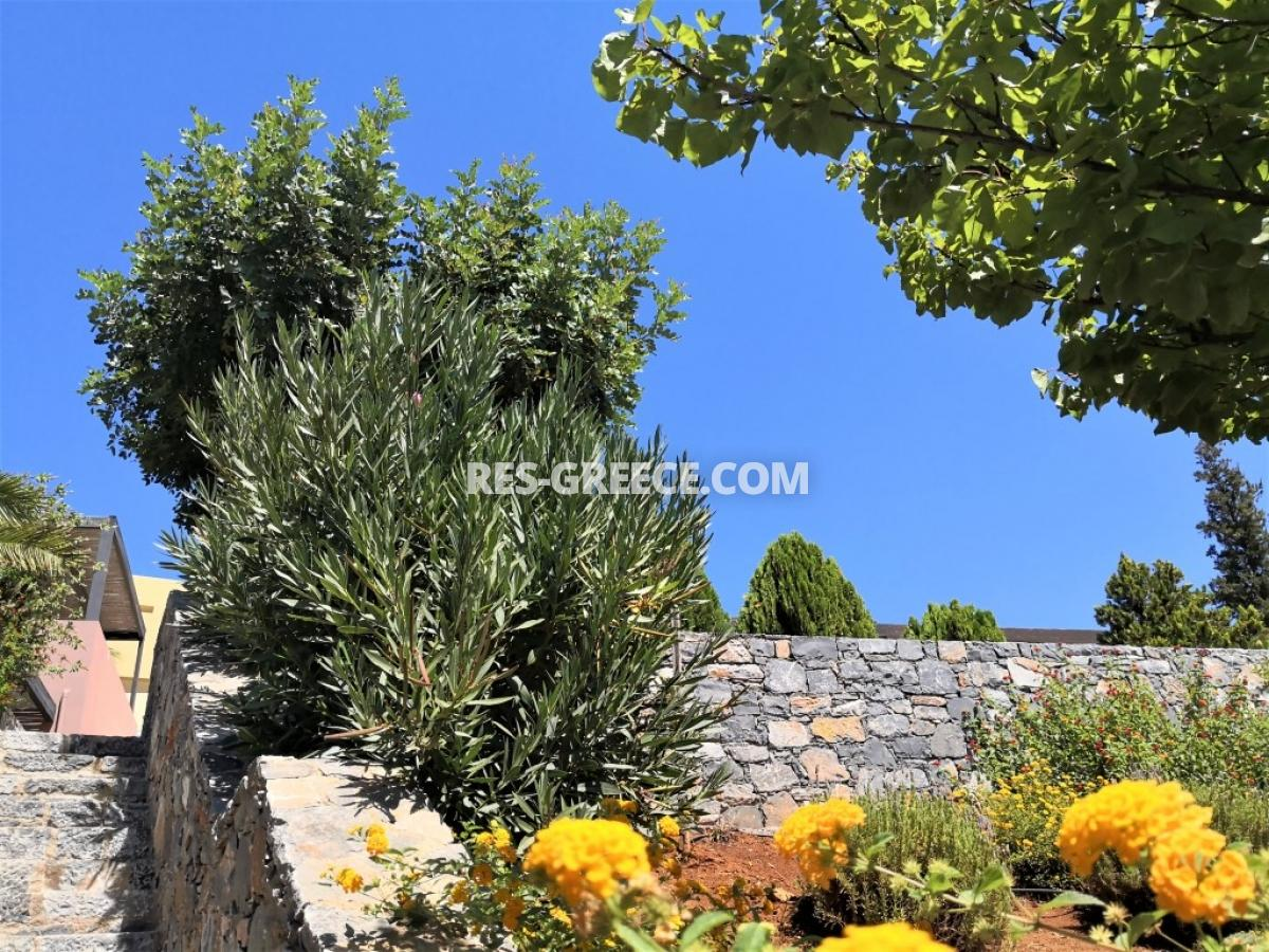 Pelagia Bungalow, Crete, Greece - bundalow for vacation and residence in Crete - Photo 13