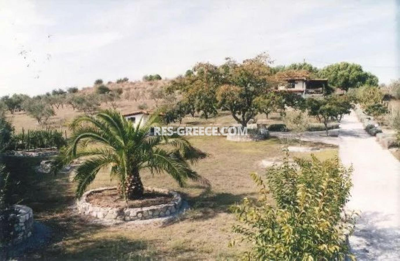 Kipos, Halkidiki-Sithonia, Greece - cottage with a big plot for sale near to the great beach - Photo 4