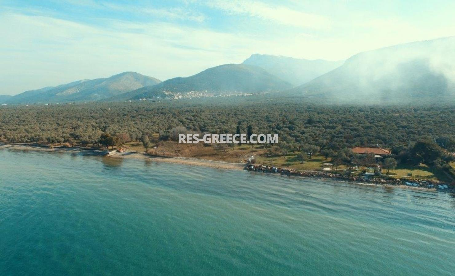 Pilos, Northern Aegean Islands, Greece - big beachfront plot with the for house for reconstruction - Photo 9