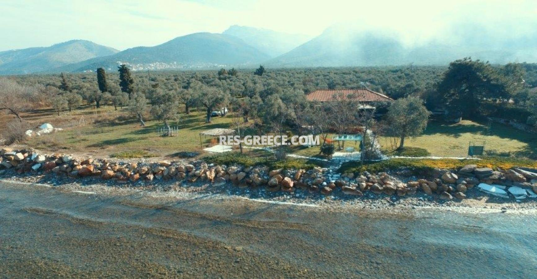 Pilos, Northern Aegean Islands, Greece - big beachfront plot with the for house for reconstruction - Photo 11