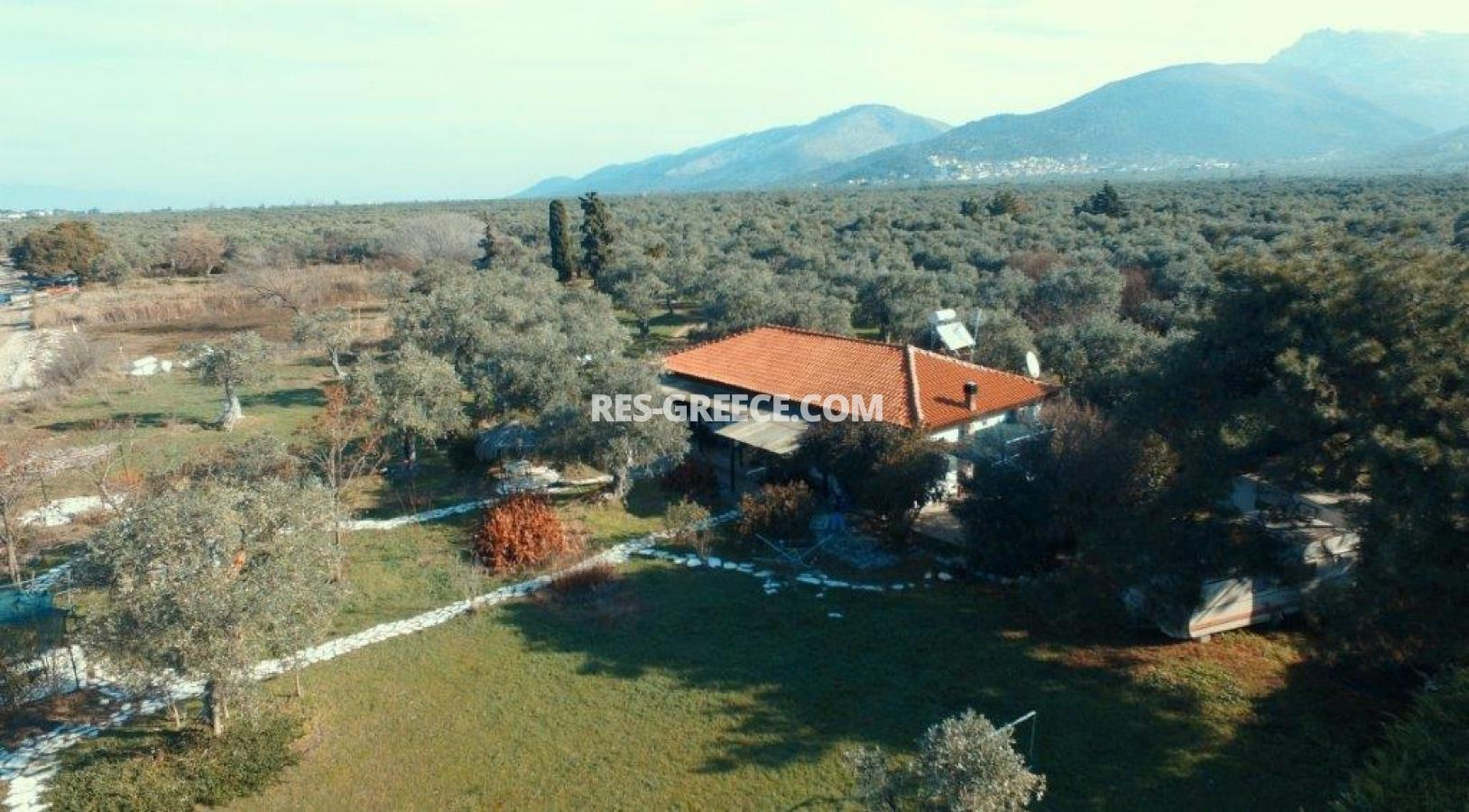 Pilos, Northern Aegean Islands, Greece - big beachfront plot with the for house for reconstruction - Photo 12