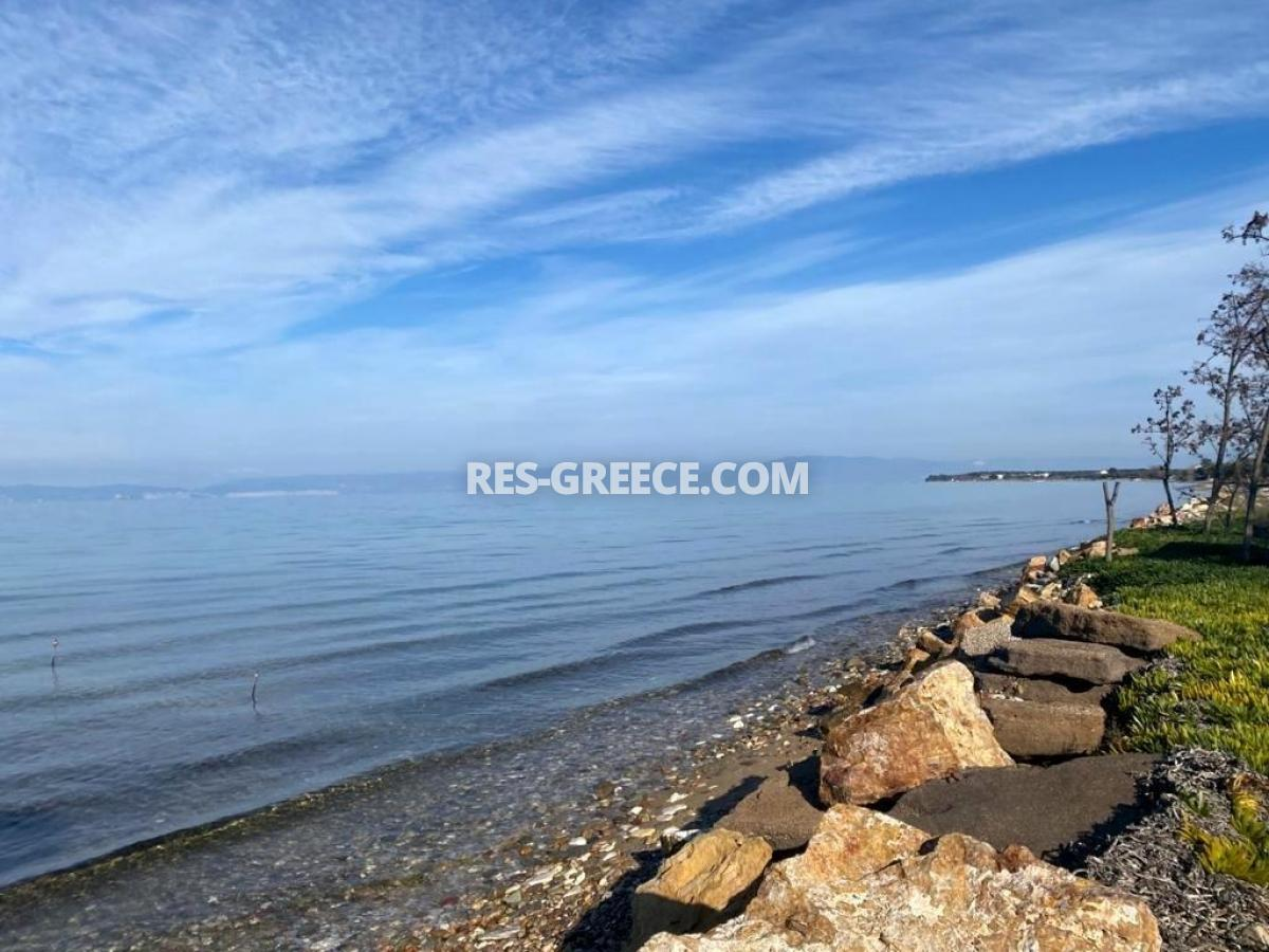 Pilos, Northern Aegean Islands, Greece - big beachfront plot with the for house for reconstruction - Photo 17