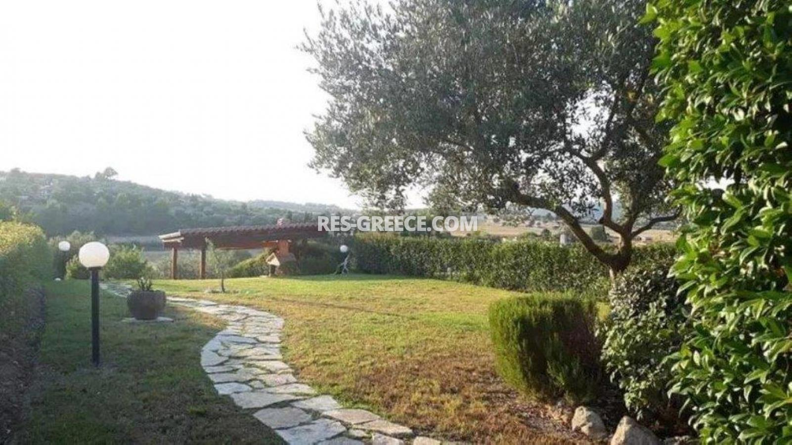 Euphorbia, Halkidiki-Kassandra, Greece - cottage by the sea for vacation and rest - Photo 22