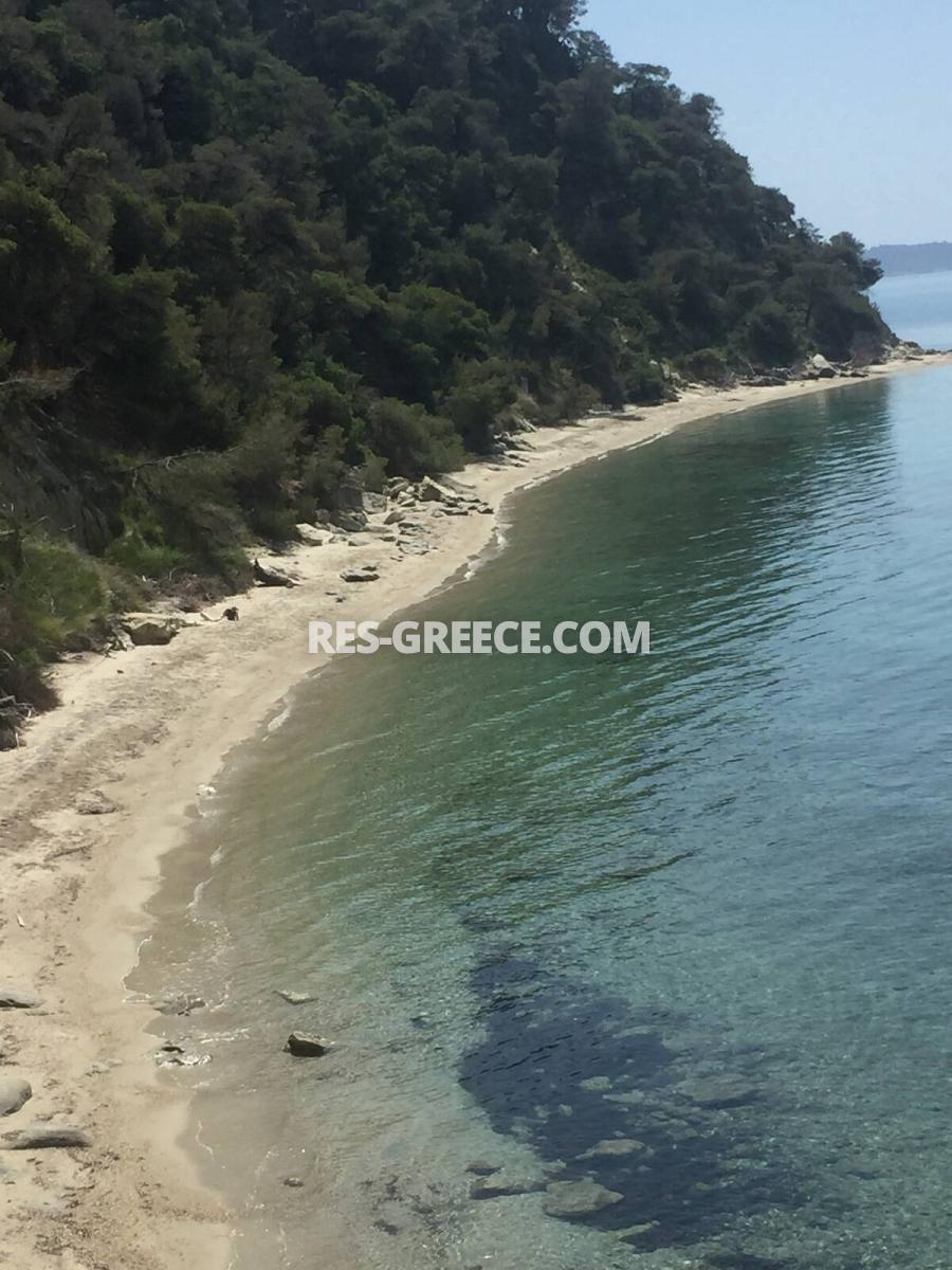 Dasotopi 1, Halkidiki-Kassandra, Greece - beachfront complex with common pool and elevator to the beach - Photo 26
