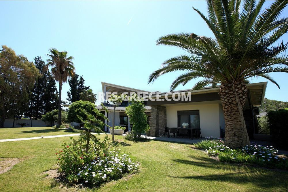 Savina, Halkidiki-Kassandra, Greece -  - Photo 14