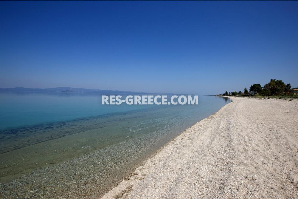 Savina, Halkidiki-Kassandra, Greece -  - Photo 40